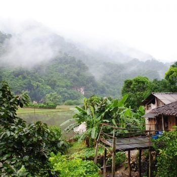 Ba Be Lake - Ba Be National Park - Vietnam
