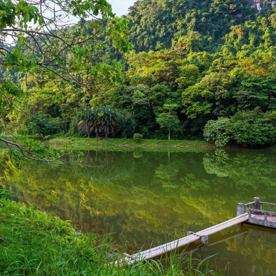 Cuc-Phuong-National-park