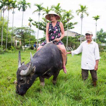 Woman riding buffalo in Hoi An