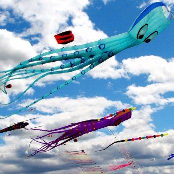 kites - Vietnam