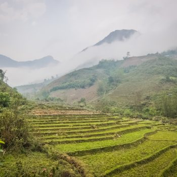 ricefields-sapa-clouds-mountains